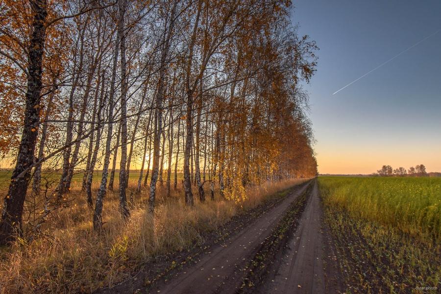 Sunrise in the autumn fields #2