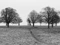 Winter loneliness