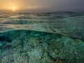 Sunset in the coral fields